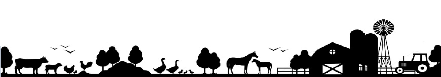 ферма анималс